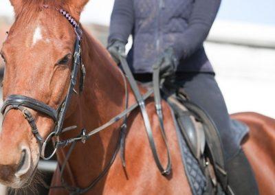 Paseos a caballo Foz de Arbaiun